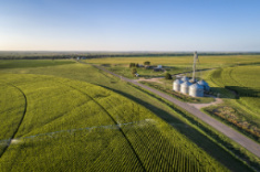 View post titled Iowa Land Auction Prices, September 11-17, 2020