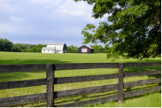 View post titled Iowa Land Auction Prices, August 28-September 3, 2020