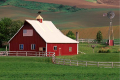 View post titled Iowa Land Auction Prices, June 21-27, 2019