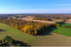 View post titled Iowa Land Auction Prices, October 2-8, 2020