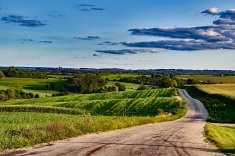 View post titled Iowa Land Auction Prices, July 6-12, 2018