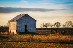 View post titled Iowa Land Auction Prices, February 28-March 5, 2020