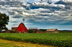 View post titled Iowa Land Auction Prices, June 22-28, 2018